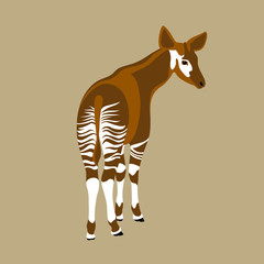 Okapi vector illustration style Flat