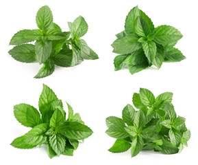 mint collection isolated