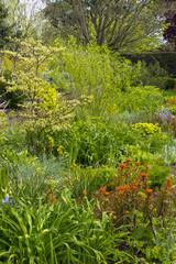Densely planted spring garden