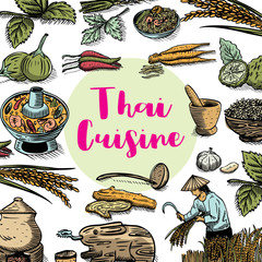 Hand drawn Thai food and herbs