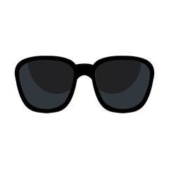sunglasses accesory isolated icon vector illustration design