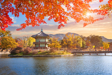 Maple leaves with pavilion old traditional at Gyeongbokgung palace, Seoul, South Korea.