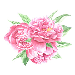 Watercolor peonies centerpiece bouquet, hand drawn flowers with green leaves isolated on white background. Floral art design.