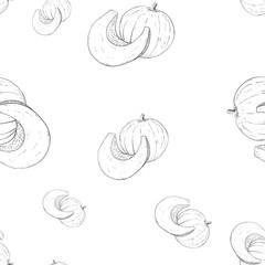 Pumpkin. Outline hand drawn sketch as seamless pattern