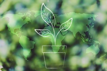 plant vase over world map overlay on green forest bokeh