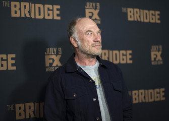 """Cast member Levine poses at premiere screening of FX television series """"The Bridge"""" at Pacific Design Center in West Hollywood"""