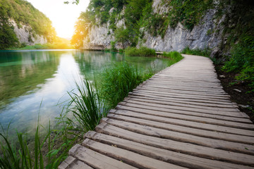 Wooden path across beautiful lake in sunny green forest Wall mural