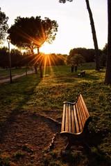 Panchina vuota al tramonto