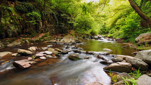 Tamrash river, Rhodope mountain, Bulgaria