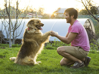 Handsome asian man holding paws of his fluffy dog on a sunny day in a garden.