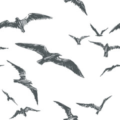 Vector seamless pattern with birds isolated on white background. Hand drawn texture with seagulls  flying in sky