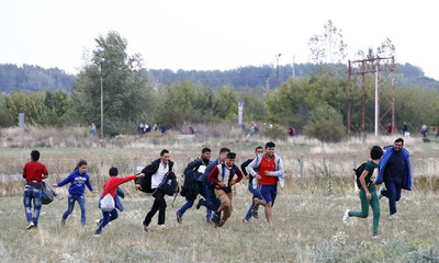 Migrants run on the field near the border crossing from Hungary in Nickelsdorf