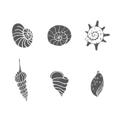 Seashells set isolated on white. Vector illustration. Beach concept for restaurant menu card, ticket, branding, logo label. Black and white seashells collection