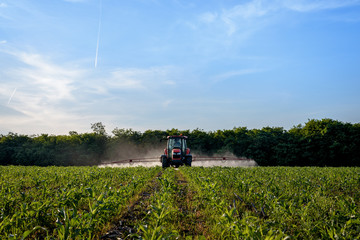 Fototapete - Farm machinery spraying insecticide to the green field.