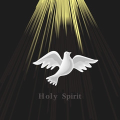 Holy Spirit icon. Hand drawn style. Christian holiday Pentecost Trinity Sunday concept. Church sacrament symbol. Pentecostal greeting. Biblical flying spiritual dove. Vector religious illustration