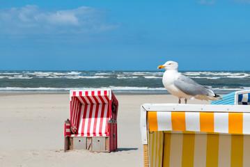 Möwe, Strandkorb, Strand, Meer, Langeoog