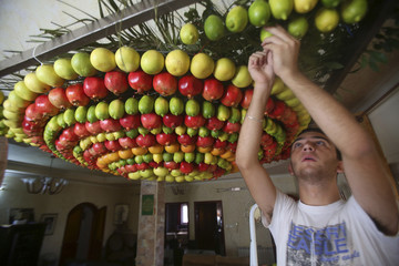 A member of the Samaritan sect decorates a traditional hut known as a sukkah with fruits and vegetables on Mount Gerizim, on the outskirts of Nablus