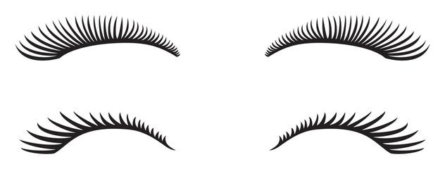 eyelashes vector design