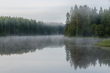 Early morning on the forest lake. Fog. Reflection on water.