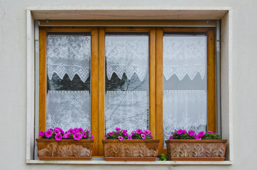 Window with Flower Boxes in Vinci, Italy