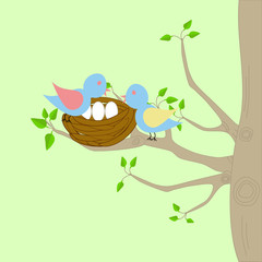 A tree with birds nest