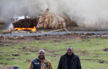 Kenya's President Kenyatta and Gabon's President Ondimba pose for a photograph after lighting an estimated 105 tonnes of Elephant tusks confiscated ivory from smugglers and poachers at the Nairobi National Park near Nairobi, Kenya,