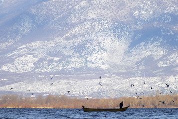 An Albanian fisherman rows his boat in Shiroke lake, near the city of Shkoder
