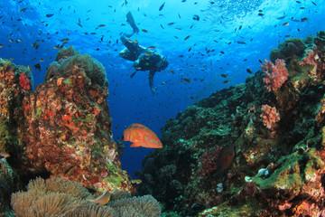 Scuba diver ecplores coral reef