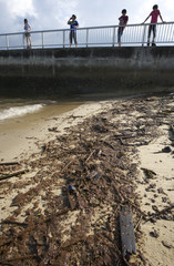 Visitors look at oil washed ashore on a beach in Singapore