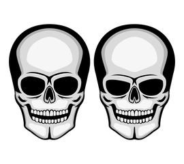 Two skulls.