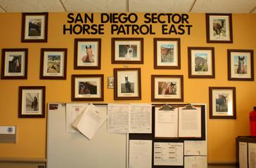 The Wider Image: Wild horse border patrol