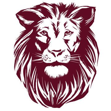 lion hand drawn vector illustration realistic sketch