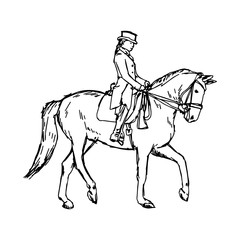 Equestrian horse - vector illustration sketch hand drawn with black lines, isolated on white background