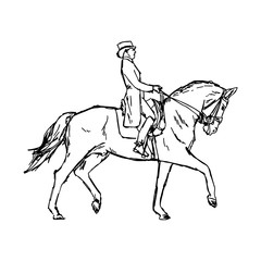 Young rider man on horse at dressage competition equestrian dressage - vector illustration sketch hand drawn with black lines, isolated on white background