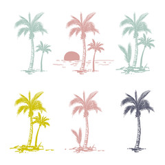 Hand drawn palm trees