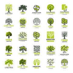 Tree outdoor travel green silhouette forest badge coniferous natural logo badge collection line spruce vector.
