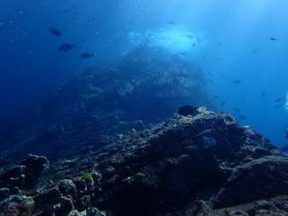 インド洋の海底山