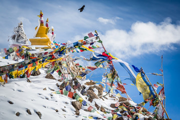 A bird is flying above the colourful Buddhist religious stupas and prayer flags at Khardung La pass, the highest (5,359 m, 17,582 ft) motorable pass on the world. Ladakh, Jammu and Kashmir, India