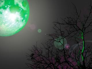 Emerald full moon in dark sky over dead tree