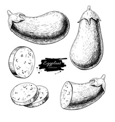 Eggplant hand drawn vector illustration set. Isolated Vegetable engraved style object with sliced pieces.