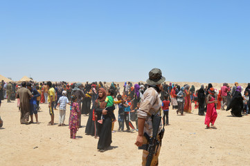 Civilians who fled their homes due to the clashes in Falluja, gather on the outskirts of Falluja
