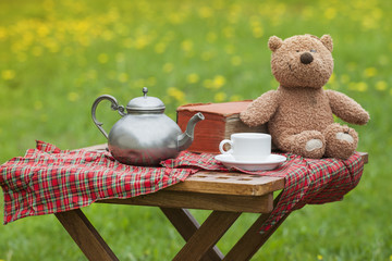 Basket for picnic with teddy bear on a blanket in the park