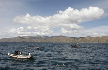 Boats guide swimmers during a swimming competition at high-altitude Titicaca lake