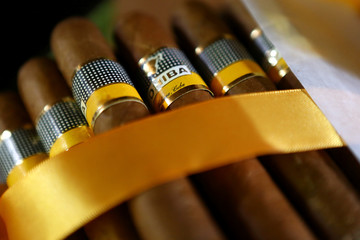Cohiba cigars are seen in this picture illustration