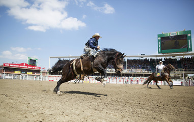 Crawley of Stephenville, Texas rides the horse She Devil in the saddle bronc event during day 2 of the Calgary Stampede rodeo in Calgary