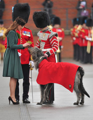 """Britain's Catherine, Duchess of Cambridge, presents a shamrock to """"Conmael"""", the Irish hound mascot at Aldershot army base in southern England"""