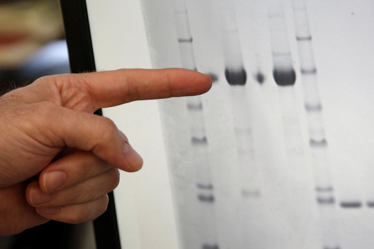 Research scientist Dan Galperin points to a screen displaying an isolated Purified Recombinant Zika Enveloped Protein in his laboratory at Protein Sciences Inc in Meriden