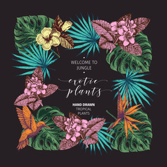 Vecotr hand drawn tropical plants poster. Exotic engraved leaves and flowers. Monstera, livistona palm leaves, birdof paradise, plumeria, hibiscus.