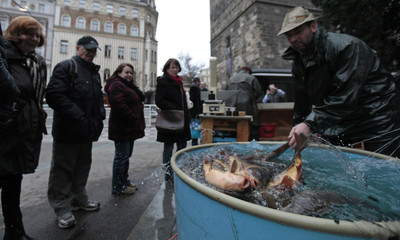 A street vendor pulls out carp from a plastic tank at a market in central Prague