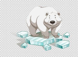 Polar bear on iceberg on transparent background